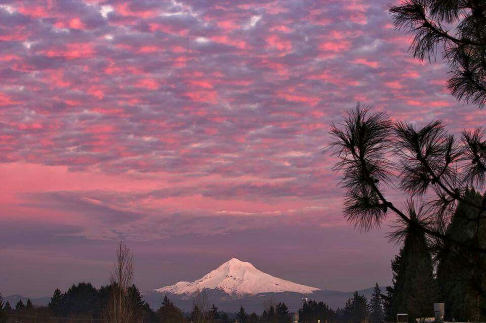 Mt Hood- Oregon