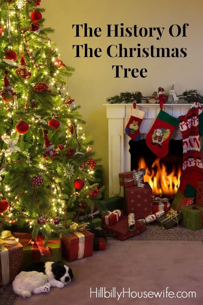 The History Of The Christmas Tree Hillbilly Housewife Christmas Trees For Kids Christmas History Christmas Fireplace