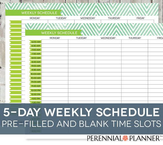Daily Schedule Printable Editable Times HalfHourly Weekly