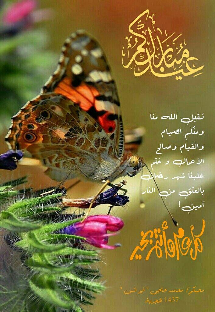 تقبل الله منا منكم الصيام والقيام وصالح الأعمال و ختم لنا شهر رمضان بالعتق من النار آمين Butterfly Butterfly Pictures Beautiful Butterflies