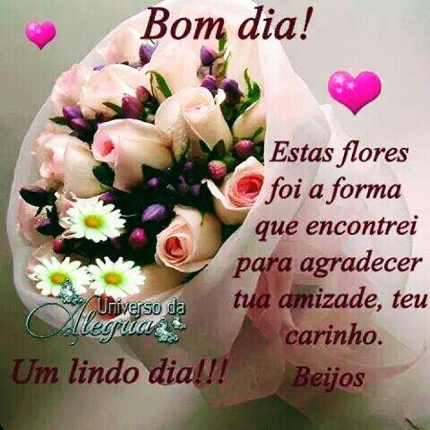 Bomdia Com Flores Amizade E Carinho Mensagens De Bom