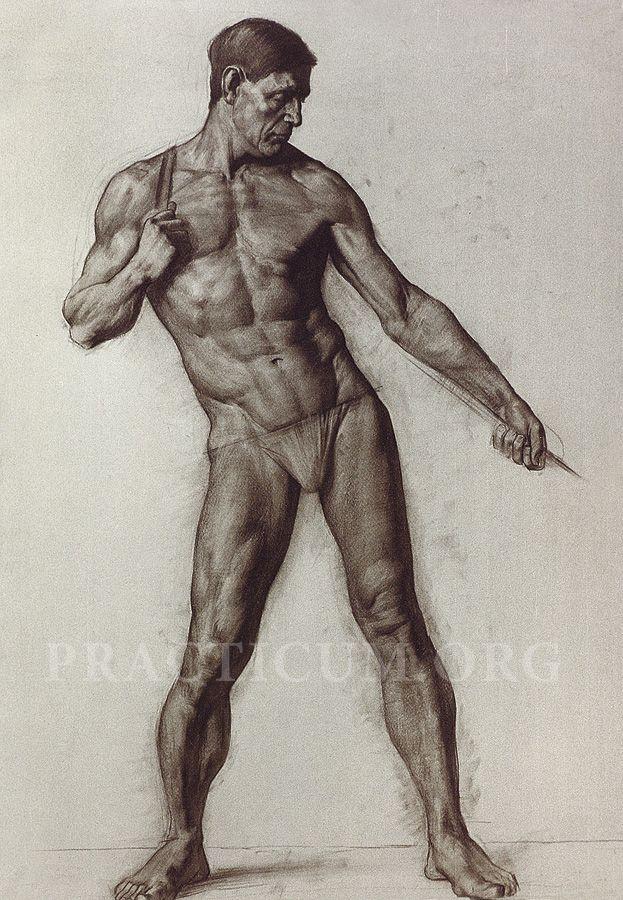 Pin de Lаviniа Dеjа en Mass   Pinterest   Cuerdas, Anatomía y Dibujo