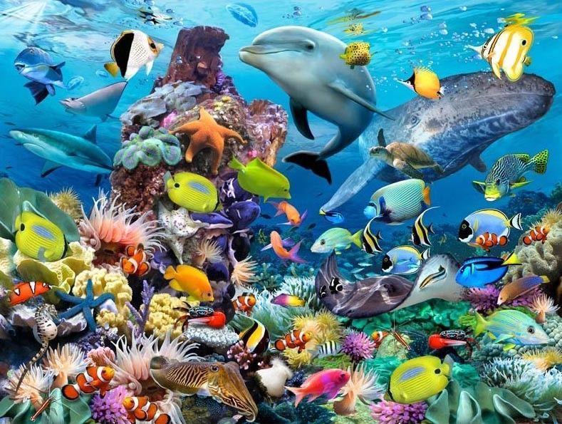 3D Lenticular Art Picture Ocean Scene Dolphins Turtles