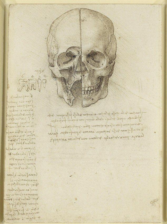 Buy charcoal, paper... and find a human skull\': Leonardo da Vinci\'s ...