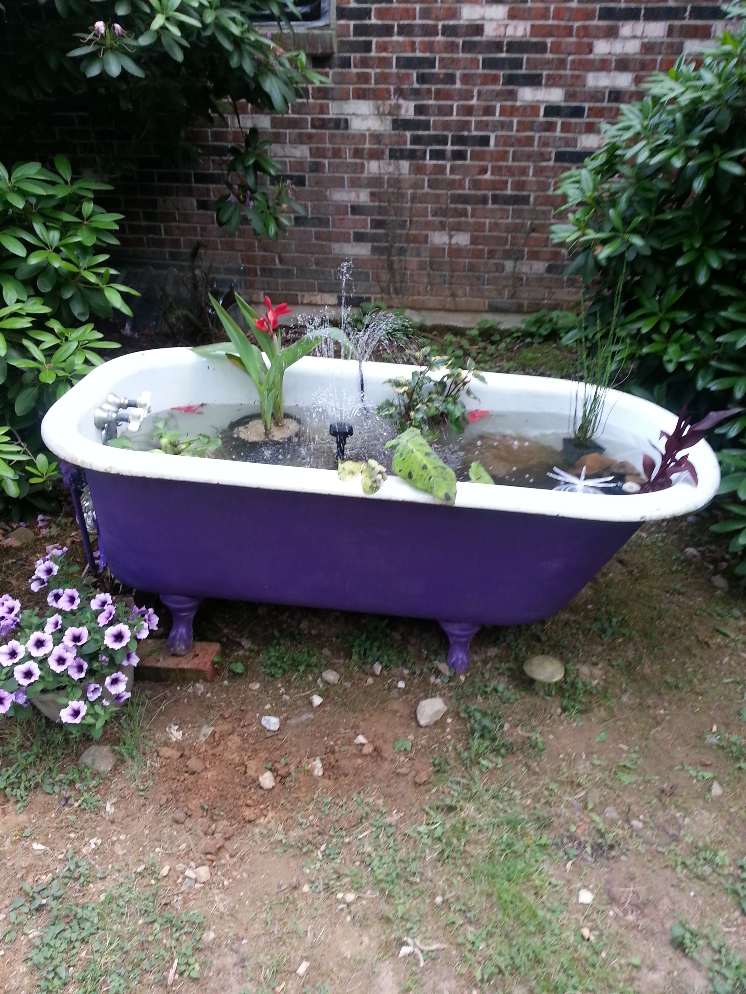 Bathtub pond prettiest pinterest bathtubs pond and for Garden table fish pond