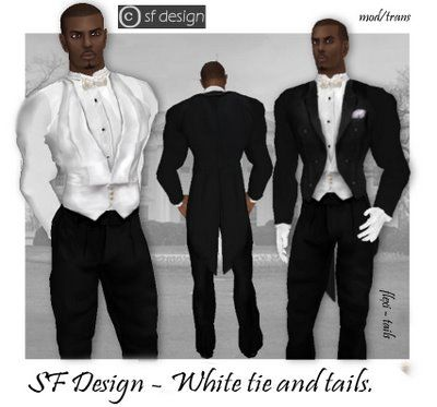 White Tie Is Is The Most Formal Evening Dress Code In Western