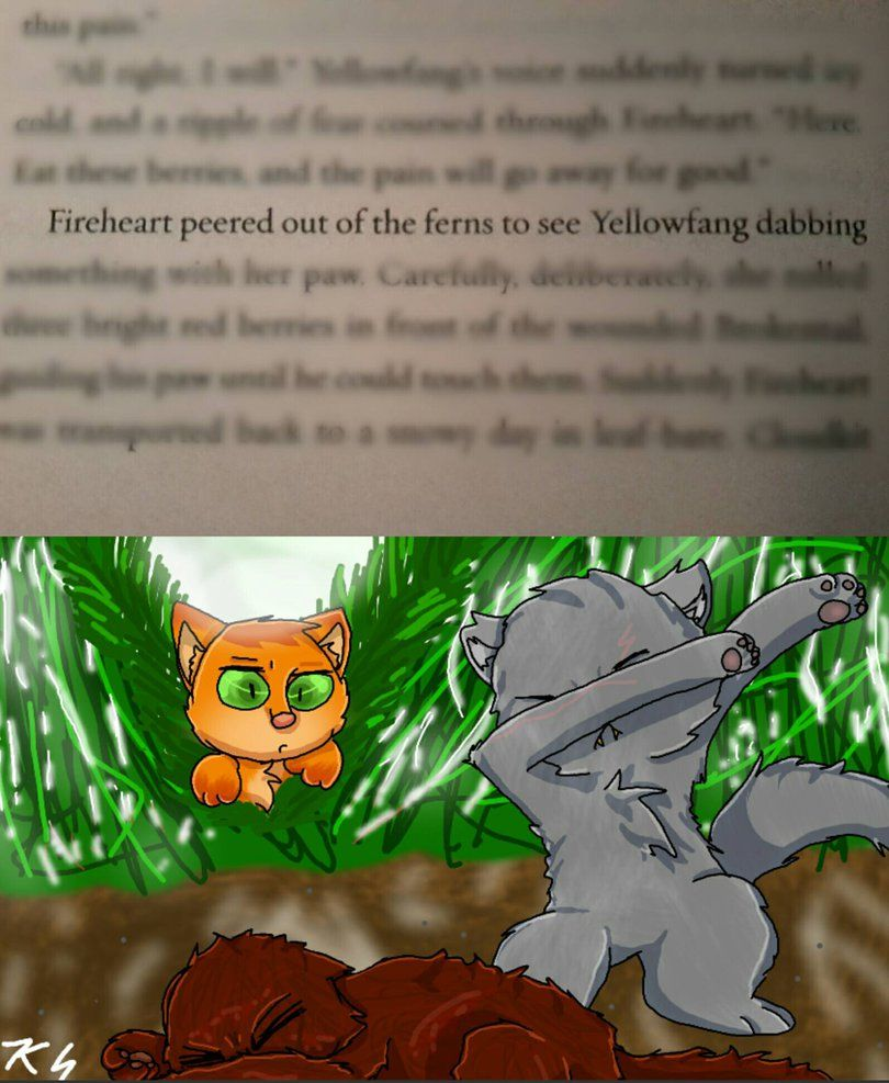 Warriors Forest Of Secrets Lexile: Pin By Eeveelover122 Jones On Warrior Cats
