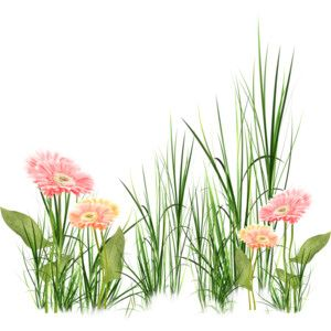grass and flowers clipart png. png buscar con google flower backgroundssketchingclip artgrassespicture grass and flowers clipart png