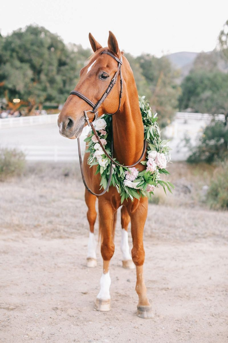 An elegant way to accessorize your horse for your wedding
