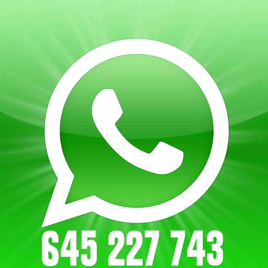 Como apagar mensagens fotos e vídeos do WhatsApp Web no PC