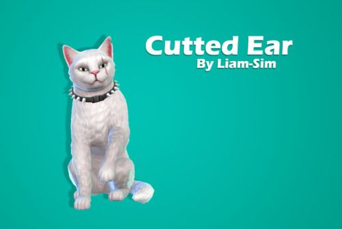 Liam Sim Cutted Ear For Fighting Cats Download Sfs No Ad Fly For Cats Only Hat Category Sims Pets Sims 4 Pets Sims