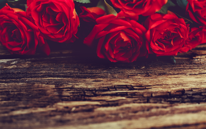 Fondo De Pantalla Flores Rosas: Descargar Fondos De Pantalla Rosas Rojas, El Romance, Las