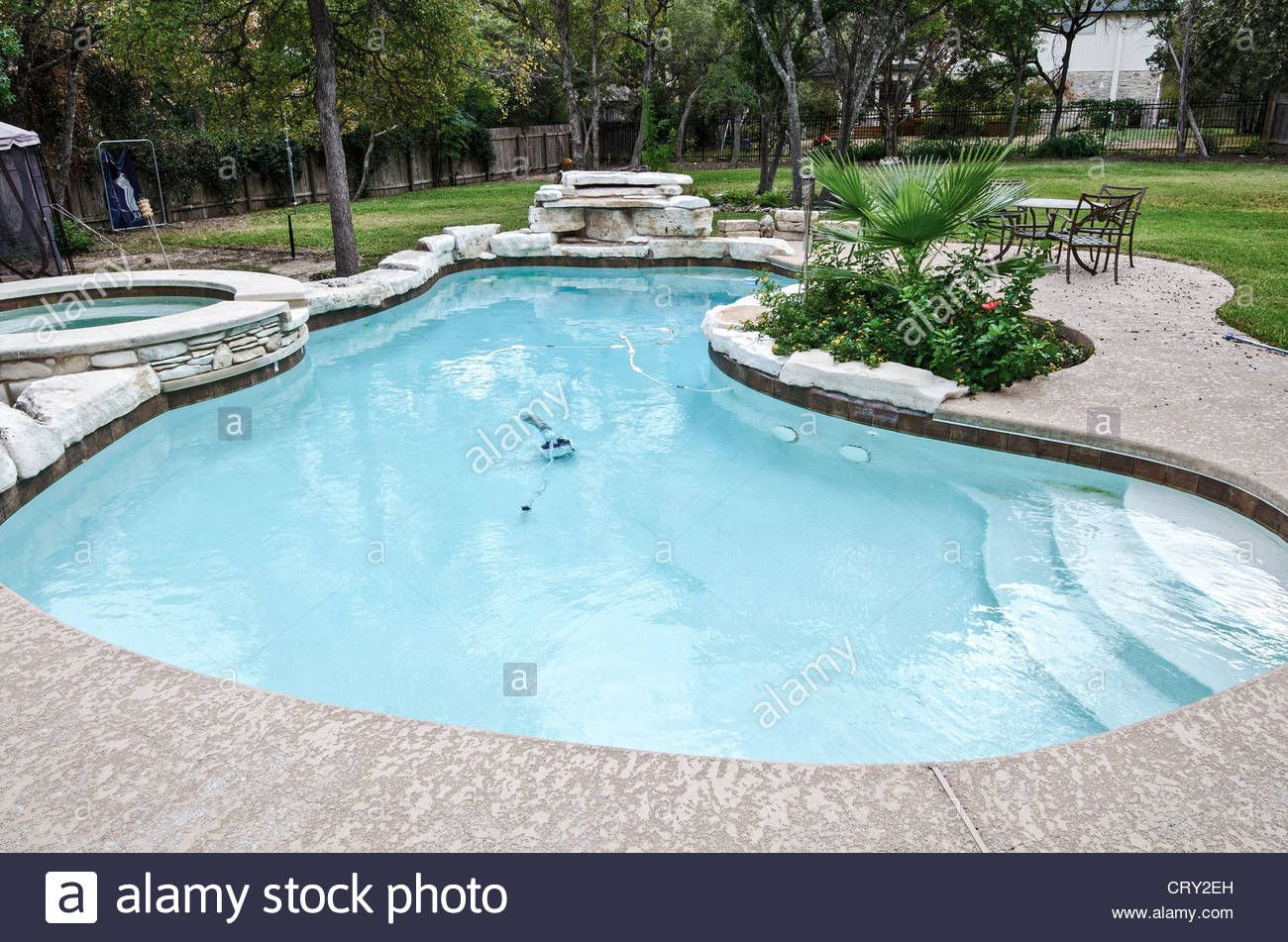 Kidney Shaped Swimming Pool With Hot Tub And Flora And Trees Swimming Pools Backyard Pool Swimming Pools