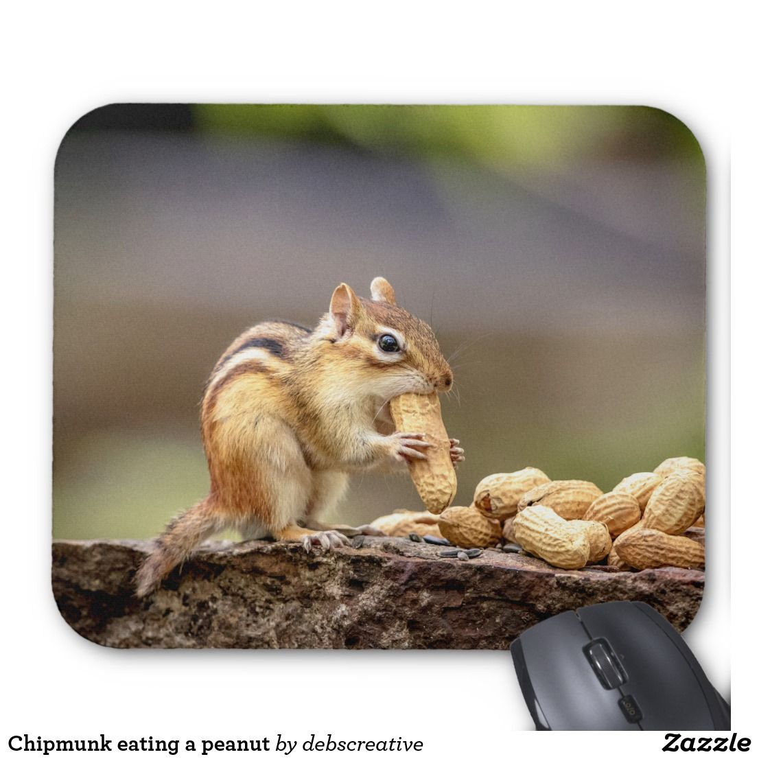 Chipmunk eating a peanut mouse pad mouse