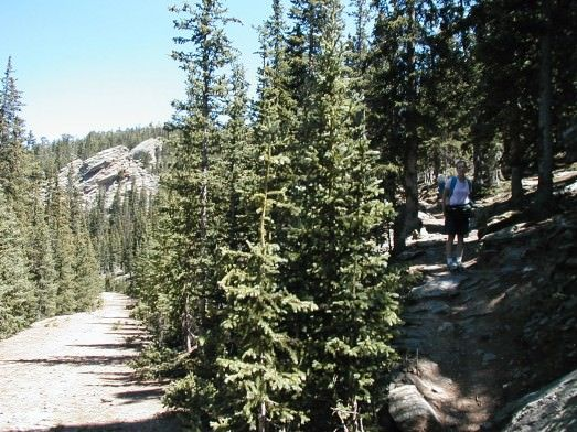 Chief Mountain trail... perfect!