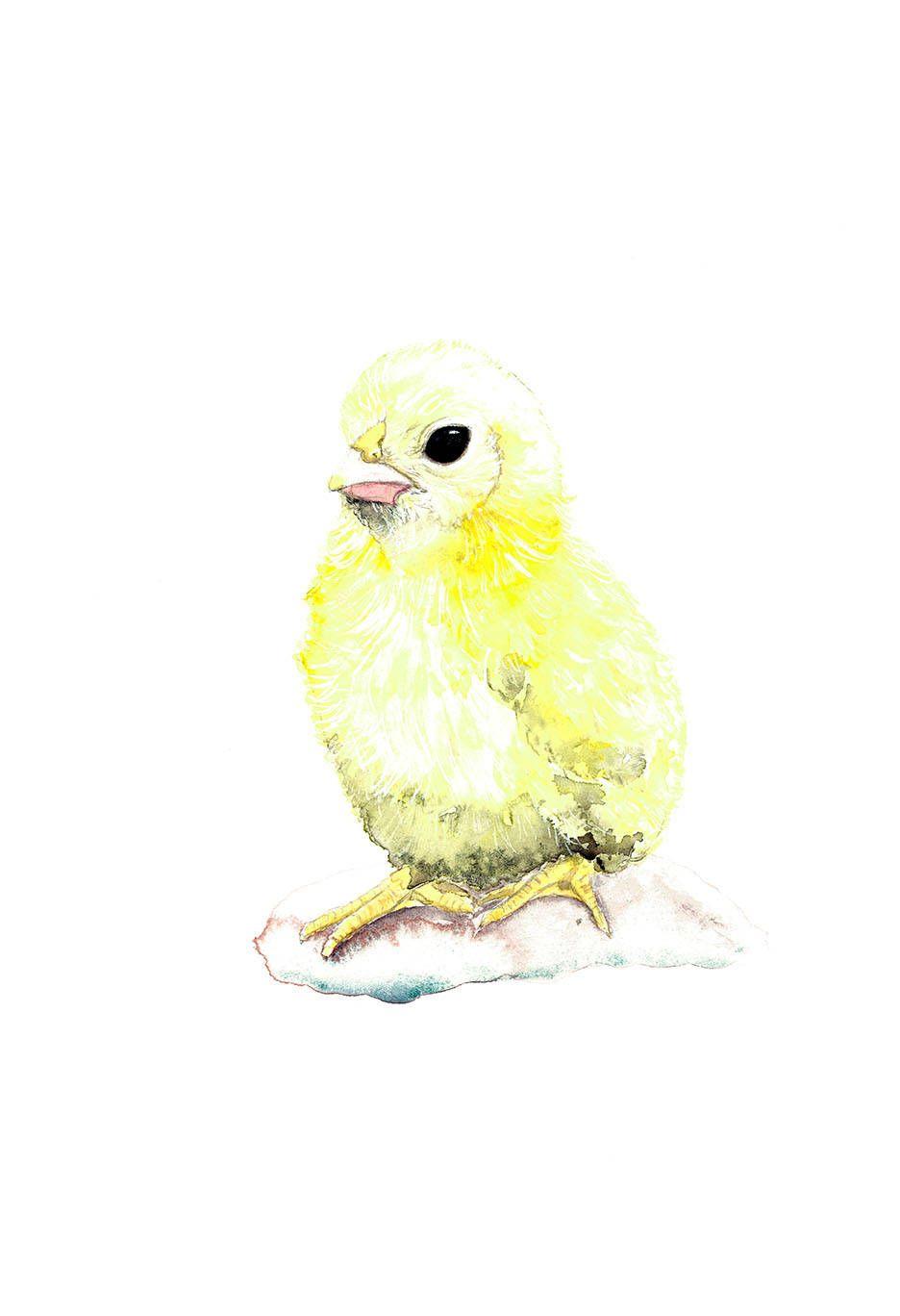 Yellow Chick Print, Chick Watercolor, Nursery Wall Art, Farm Animal ...