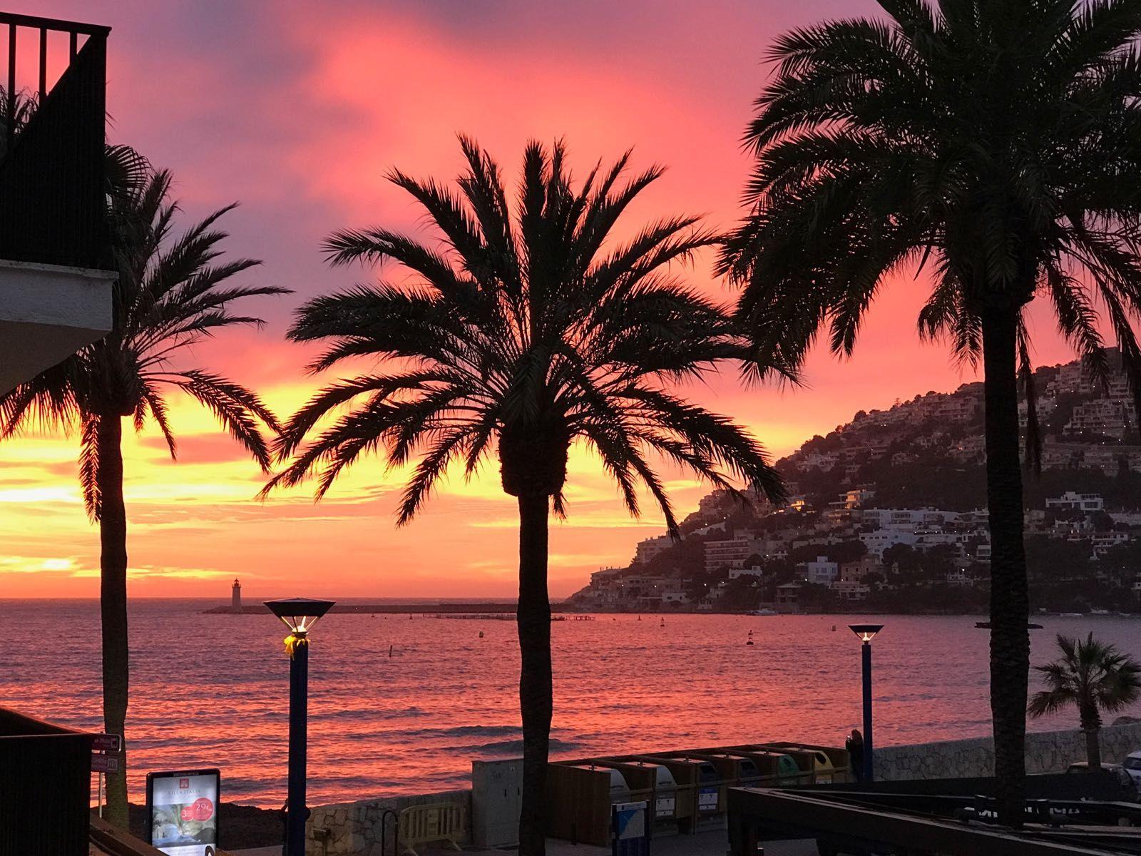 Abendstimmung in Puerto Andratx, Mallorca