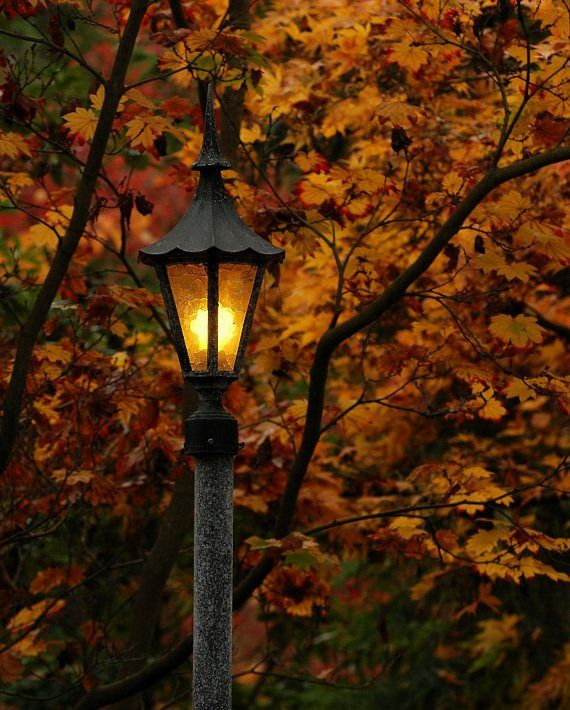 #autumnadventures