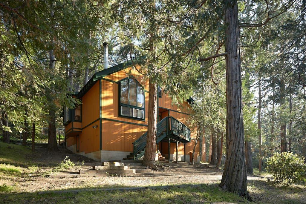Entire Home Apt In Idyllwild Pine Cove United States Hidden Among The Tall Oak Cedar Pine Trees This G Idyllwild Pine Cove Idyllwild San Jacinto Mountains