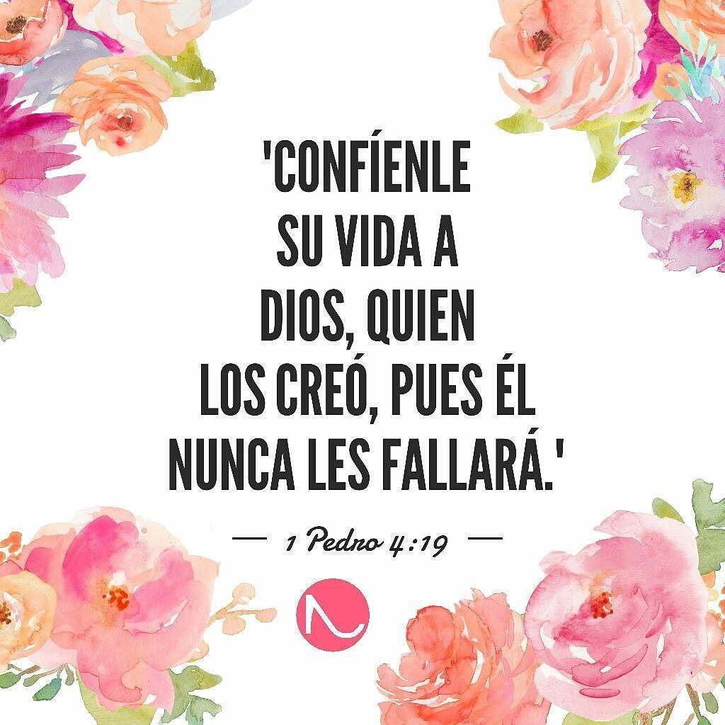 Parafraseando Un Poquito El Versículo 1 Pedro 4 19 Feliz Día Entaconadas Silla De Ruedas Para Perro Entaconadas Nombres De Dios