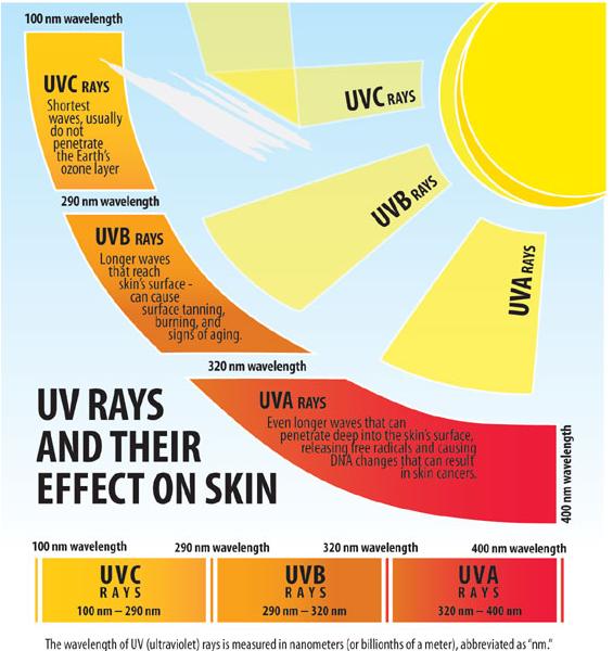 uvb tanning beds. brand new mercola vitality elite tanning bed uva