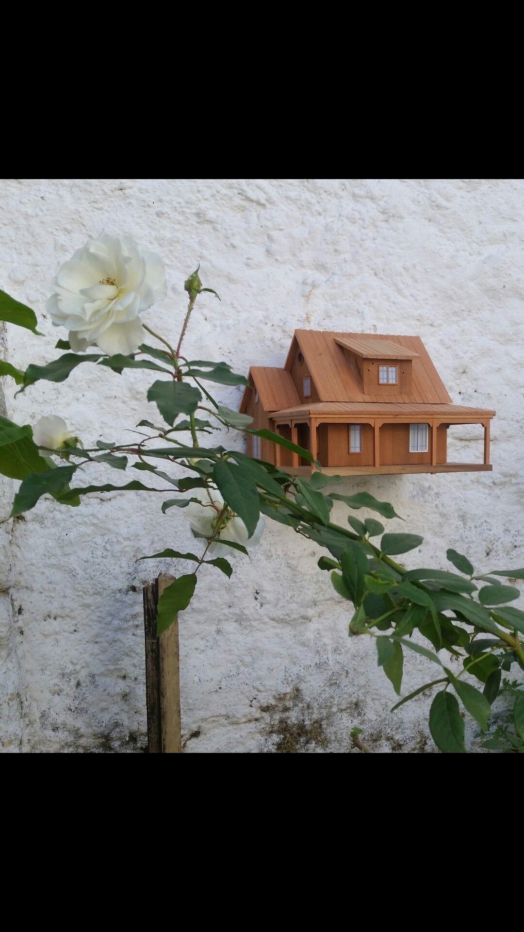 Casas de passarinho  ,