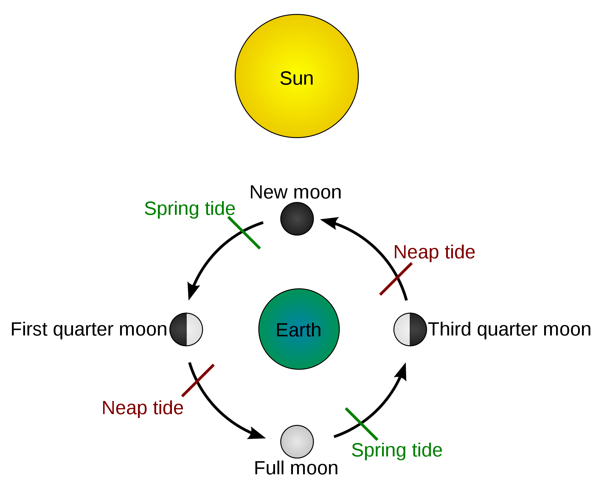 Pin By Kelly Vicars On Oceanmandala Pinterest Science Moon And Phases Of The Diagram For Kids Solar Lunar First Grade Worksheets Earth Spring Nature