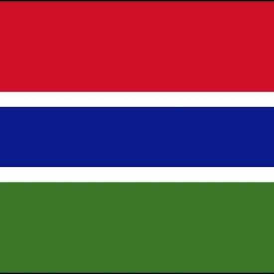 The gambia flag stickers