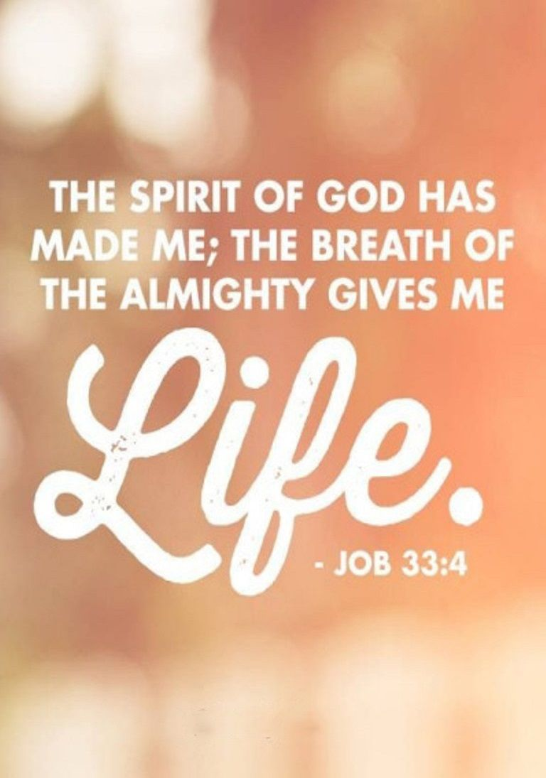 Job 33:4 (NIV) - The Spirit of God has made me;     the breath of the Almighty gives me life.