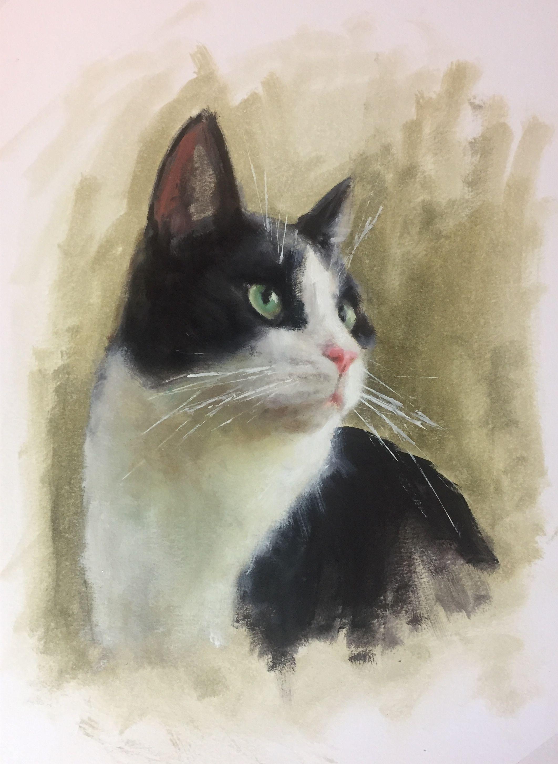 Sleeping cat painting cat drawing cute cat  painting kitty painting art cat contemporary painting british shorthair cat animal painting