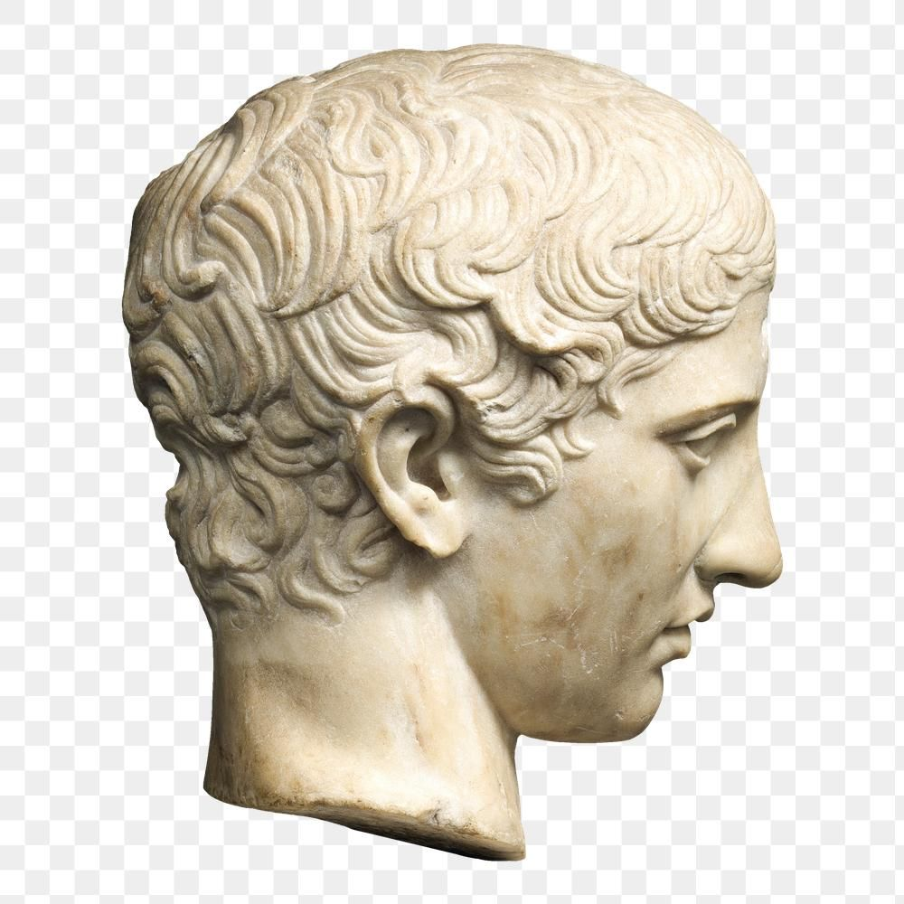 Download Premium Png Of Classic Marble Youth Head Sculpture Png 2751336 Statue Vintage Illustration Sculpture