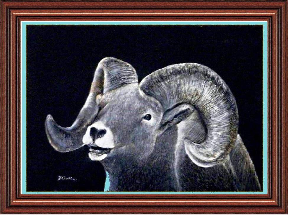 Rocky Mountain Sheep (http://www.e-artdesign.com)