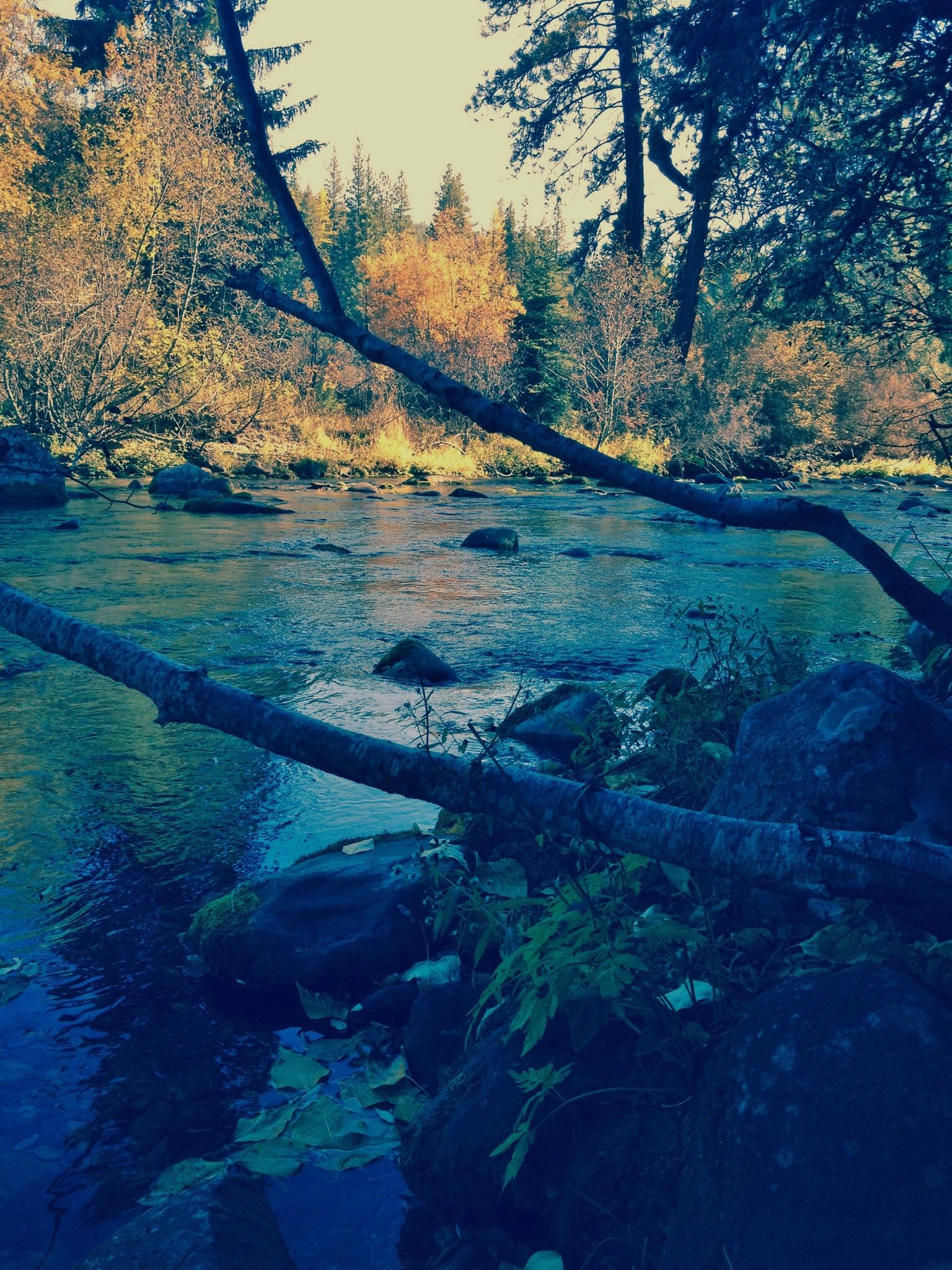 A nice post about the Rattlesnake National Recreation Area in Missoula, MT.