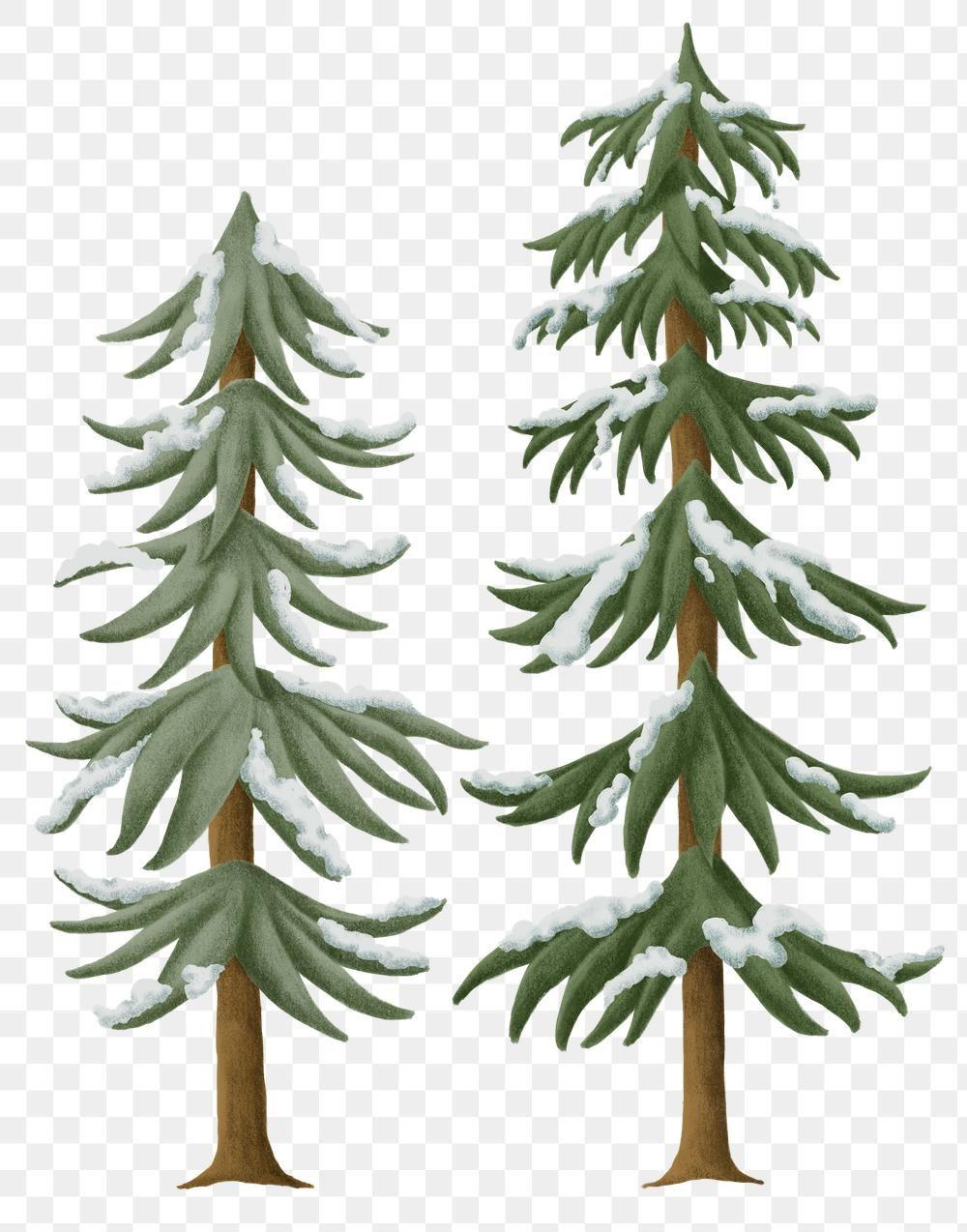 Download Premium Png Of Winter Pine Tree Png Sticker Christmas Season Set Christmas Seasons Winter Theme Artwork