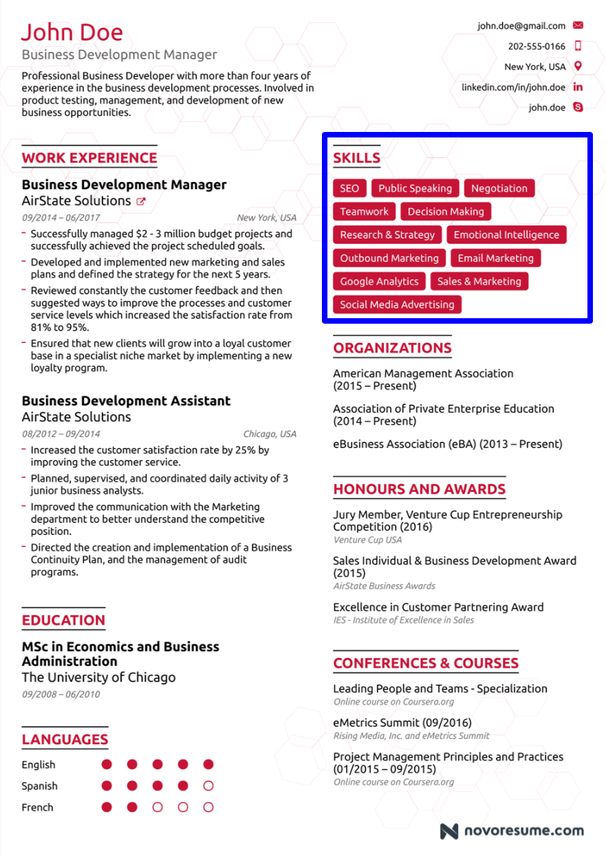 Business Developer Resume Sample The Commercial Enterprise Developer Is A Very Crucial Positi