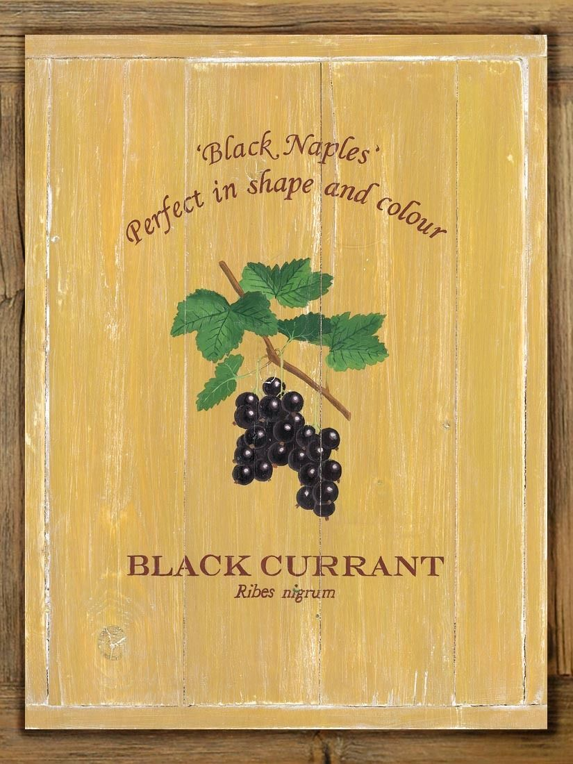 Black Currant Metal Sign On Rustic Barn Wood Frame