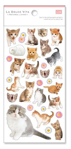 LA DOLCE VITA High-quality kitten photo Planner/ Scrapbook/ Gift Wrapping Washi Paper Clear Decor Stickers. by niconecozakkaya on Etsy