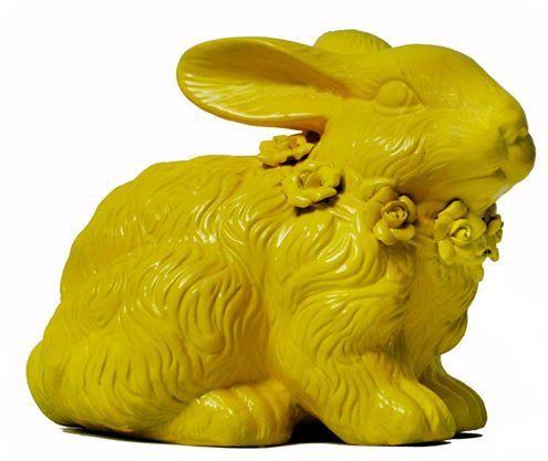 Conejo intervenido