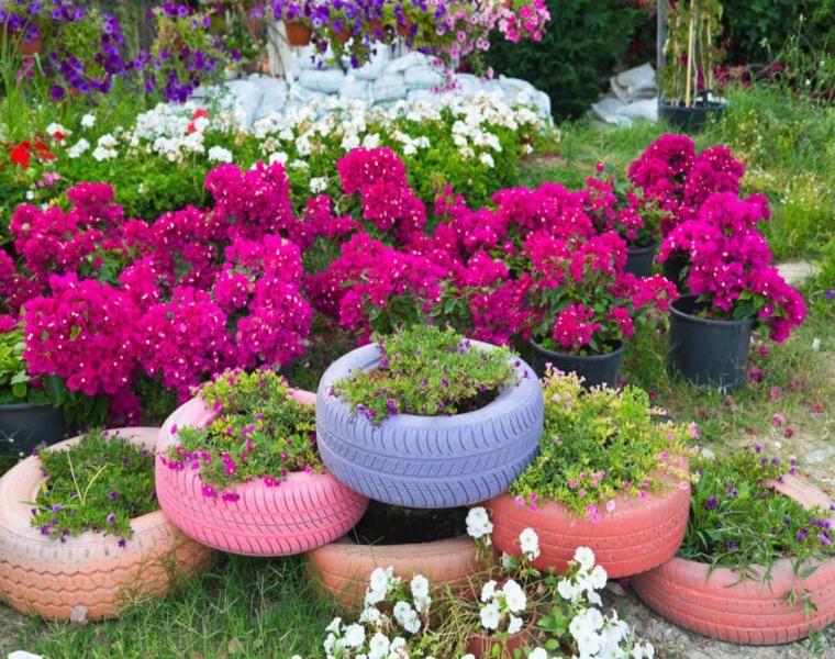 jardineras de ruedas viejas Plantas Flores Jardines Pinterest