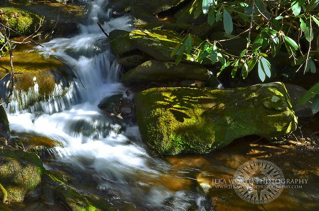 Mossy cascade in mountain stream. Great Smoky Mountains National Park, Tennessee, Appalachian, USA by Jeka World Photography, via Flickr