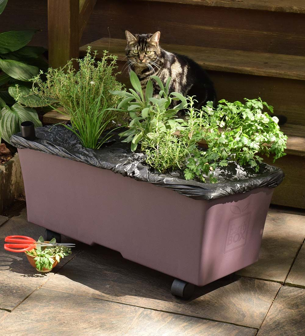 The EarthBox Container Gardening Kit Makes Putting In A Garden Easy! Use  This Self Watering Garden Box To Plant Your Garden Anywhere, Using Less  Water And ...