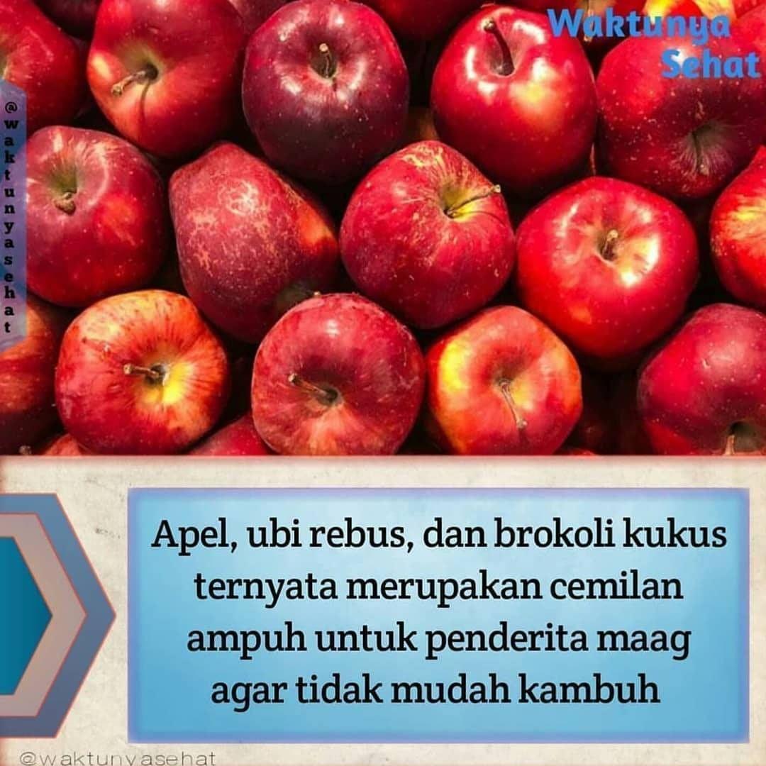 Khasiat Buah Apel Untuk Ibu Mengandung