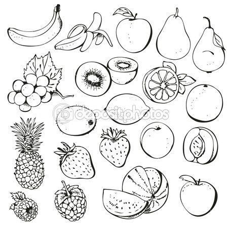 Fruit And Berry Collection Fruits Drawing Doodle Art Flowers Fruit Picture