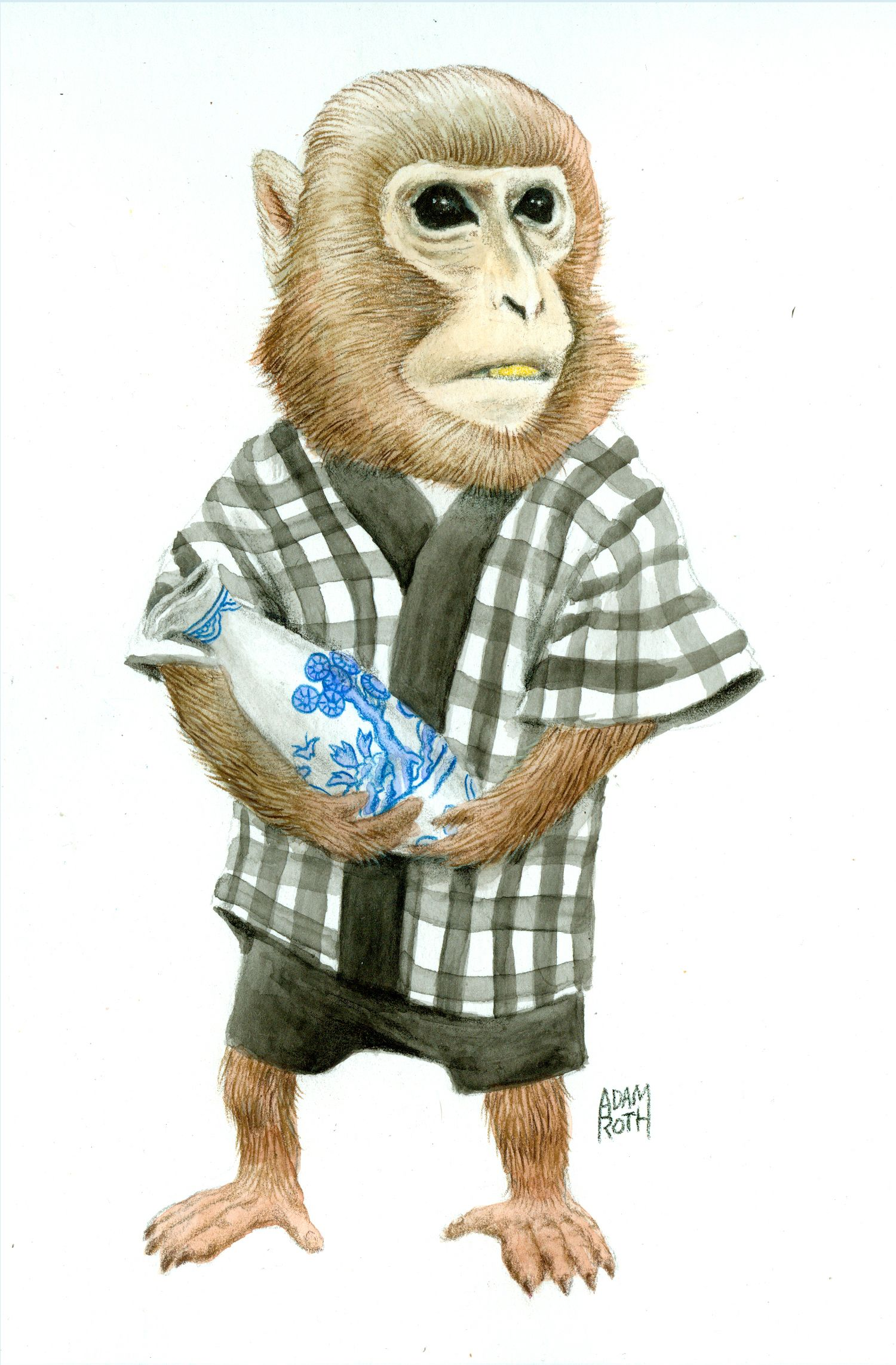 resume Resume Monkey a collection of creatures that prove you dont have to be human 8 animals better resumes than you