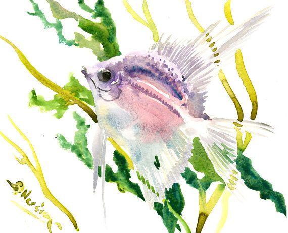 """Scalar Fish . Angelfish,   8"""" x 10"""" aquarium fish art, freshwater aquarium fish, fish lover painting"""