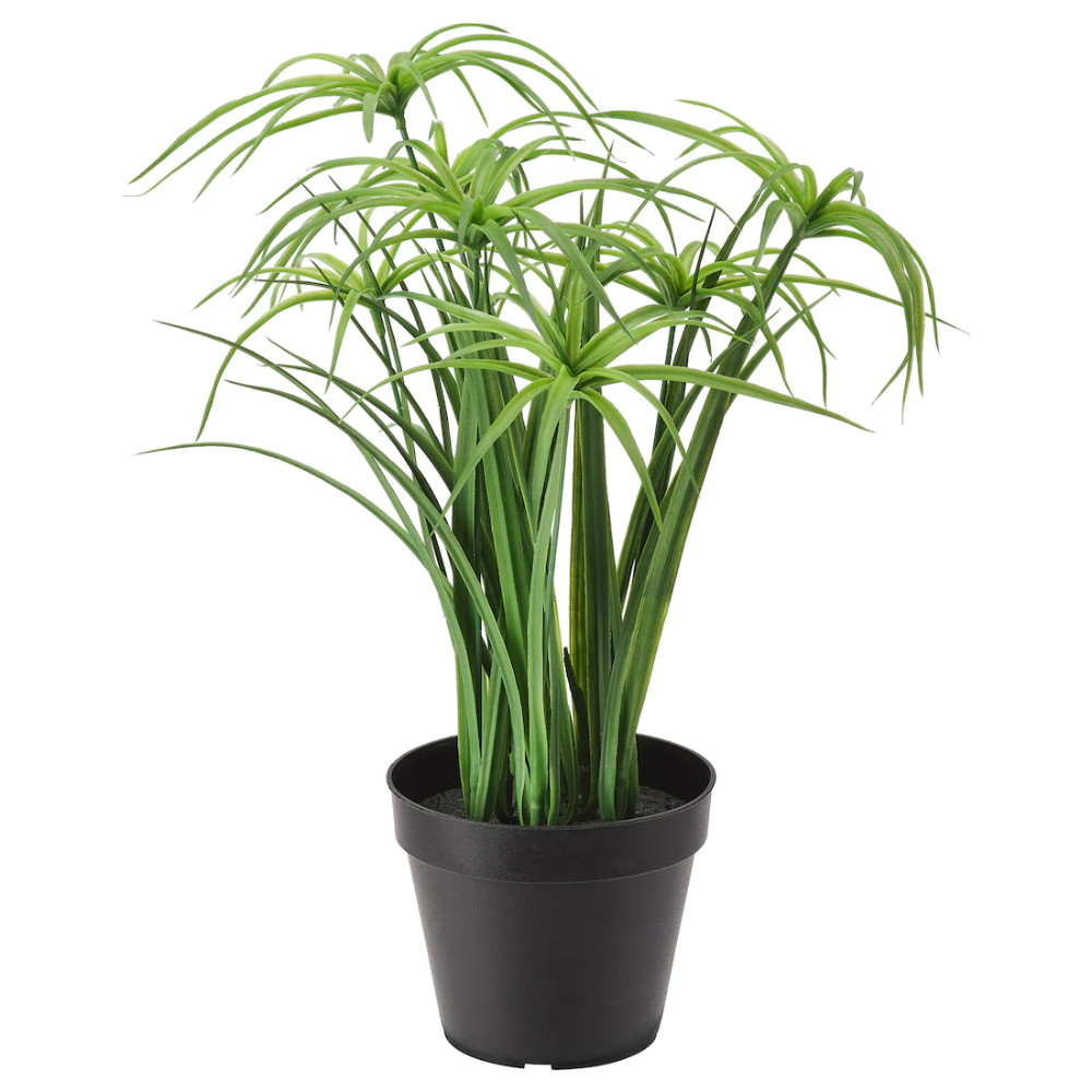 Fejka Artificial Potted Plant In Outdoor Papyrus Sedge Ikea In 2020 Artificial Potted Plants Artificial Plants Indoor Artificial Plants