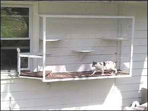 Donu0027t have a patio? Even small spaces can afford a cat some safe outdoor time. These cats walk right out the window onto a small cat terrace. & Creative u201cCatiou201d enclosures keep cats safe in their yards | chairman ...