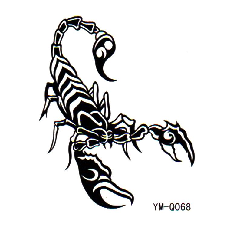 Scorpion painting aliexpress com buy tattoo stickers waterproof male