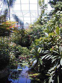 38740b516d0cd50141cb793a5a56d7cd - St Louis Botanical Gardens Butterfly House