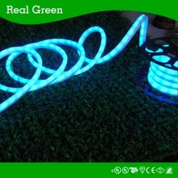 Led Rope Light Smd5050 Led Strip Rope Light 12v 24v 120v Real Green Lighting Company Limited Led Rope Lights Rope Light Led Down Lights